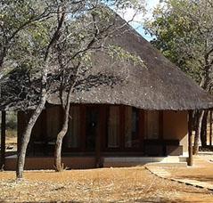 2 - Nkwe - Leopard